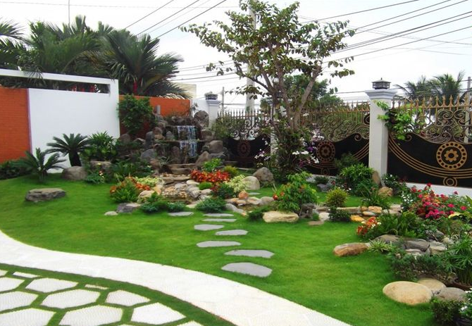 cỏ nền sân vườn