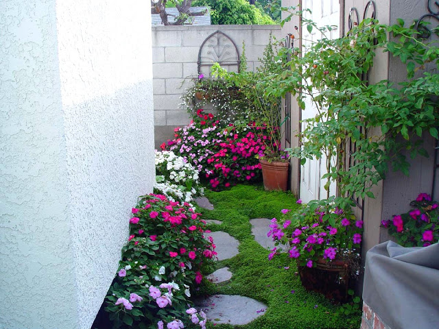 Sân vườn nhỏ góc nhà với hoa và cỏ rêu xanh