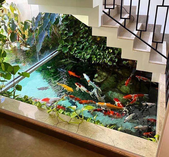 hồ cá trong gaamg cầu thang vẫn rất đẹp