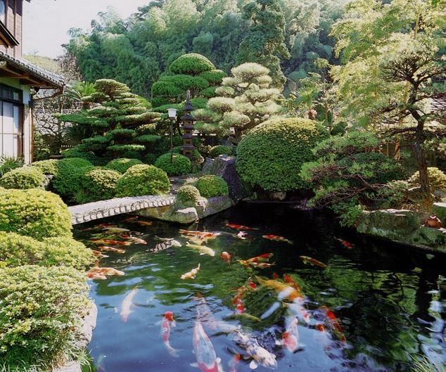 <em>Hồ Koi Nhật Bản kết hợp nhiều cây xanh</em>