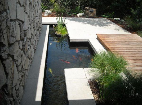 hồ cá bên hông nhà hiện đại